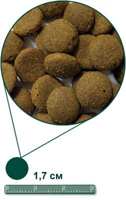 AG Adult Dog Large Breed Корм для крупных собак курица и рис