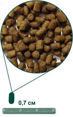 Ардэн Грэньдж для взрослых кошек,  с лососем и рисом