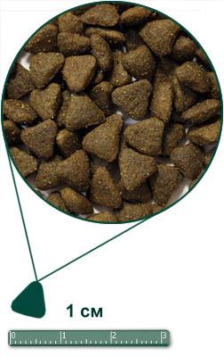 Arden Grange Mini Adult Dog Chicken & Rice Корм сухой для взрослых собак мелких и карликовых пород со свежей курицей и рисом